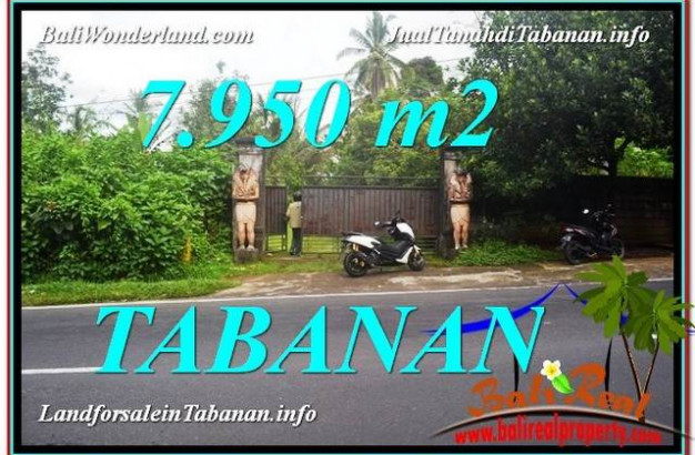 Affordable 7,950 m2 LAND FOR SALE IN TABANAN BALI TJTB331