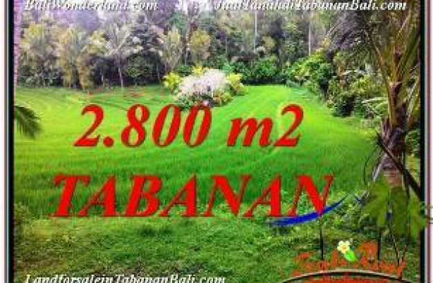 Exotic PROPERTY LAND SALE IN TABANAN TJTB333