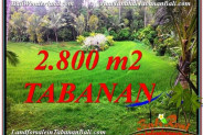 Affordable 2,800 m2 LAND SALE IN TABANAN BALI TJTB333