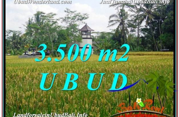 Magnificent PROPERTY 3,500 m2 LAND FOR SALE IN Ubud Tegalalang TJUB596