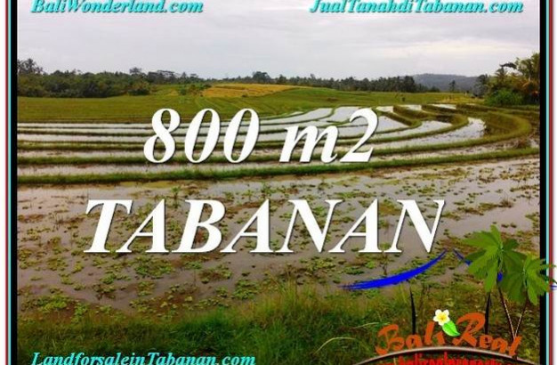FOR SALE Affordable PROPERTY 800 m2 LAND IN TABANAN TJTB324