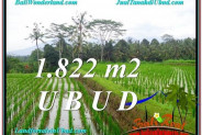Beautiful 1,822 m2 LAND SALE IN UBUD BALI TJUB574