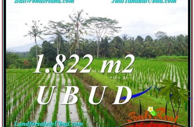 UBUD 1,822 m2 LAND FOR SALE TJUB574