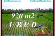 Affordable 920 m2 LAND IN UBUD BALI FOR SALE TJUB575