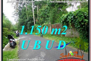 Affordable 1,150 m2 LAND SALE IN UBUD TJUB576