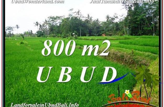 Affordable PROPERTY 800 m2 LAND FOR SALE IN Ubud Pejeng TJUB581