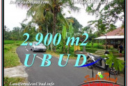 Magnificent 2,900 m2 LAND IN UBUD BALI FOR SALE TJUB586