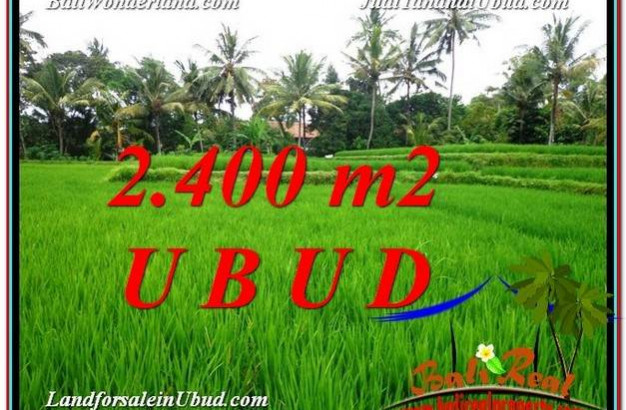 Beautiful PROPERTY 2,400 m2 LAND SALE IN Sentral Ubud TJUB587
