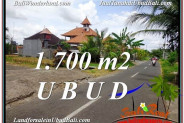 Magnificent 1,700 m2 LAND IN UBUD BALI FOR SALE TJUB588