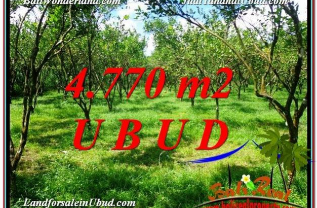 Beautiful 4,770 m2 LAND SALE IN UBUD BALI TJUB598