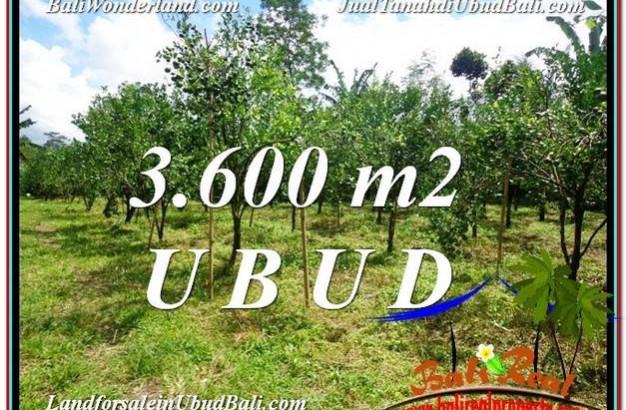 Affordable PROPERTY Ubud Tegalalang 3,600 m2 LAND FOR SALE TJUB599