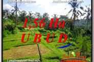 FOR SALE Magnificent PROPERTY LAND IN UBUD TJUB601