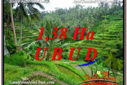 FOR SALE 13,800 m2 LAND IN UBUD TJUB590