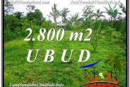FOR SALE Exotic LAND IN Ubud Tegalalang BALI TJUB592
