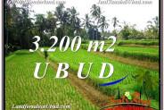 Exotic 3,200 m2 LAND IN UBUD BALI FOR SALE TJUB594