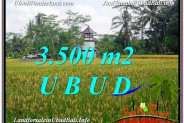 Magnificent UBUD BALI 3,500 m2 LAND FOR SALE TJUB596