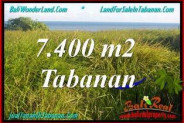 FOR SALE Affordable PROPERTY 7,400 m2 LAND IN TABANAN BALI TJTB341