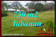 Magnificent TABANAN BALI 750 m2 LAND FOR SALE TJTB346