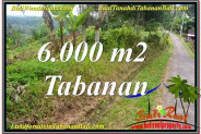 FOR SALE Beautiful LAND IN Tabanan Selemadeg TJTB349