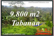 Exotic PROPERTY LAND IN TABANAN BALI FOR SALE TJTB350