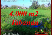 Beautiful PROPERTY 4,000 m2 LAND SALE IN TABANAN TJTB352