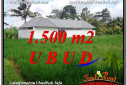 Magnificent LAND FOR SALE IN UBUD TJUB600