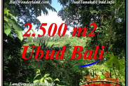 Magnificent 2,500 m2 LAND SALE IN UBUD BALI TJUB605