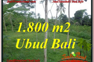 Affordable UBUD 1,800 m2 LAND FOR SALE TJUB610