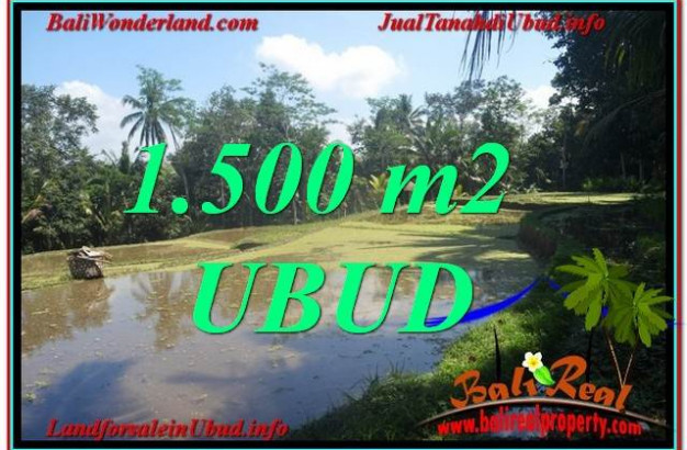 Magnificent 1,500 m2 LAND FOR SALE IN UBUD BALI TJUB630
