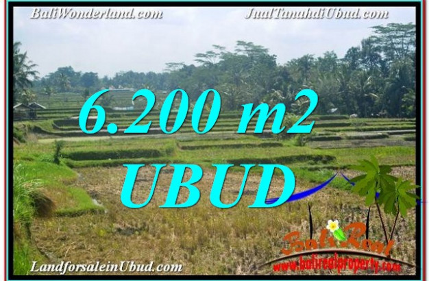 FOR SALE Beautiful 6,200 m2 LAND IN UBUD BALI TJUB631