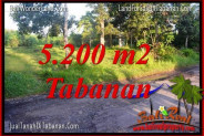 Affordable LAND IN Tabanan Selemadeg FOR SALE TJTB334