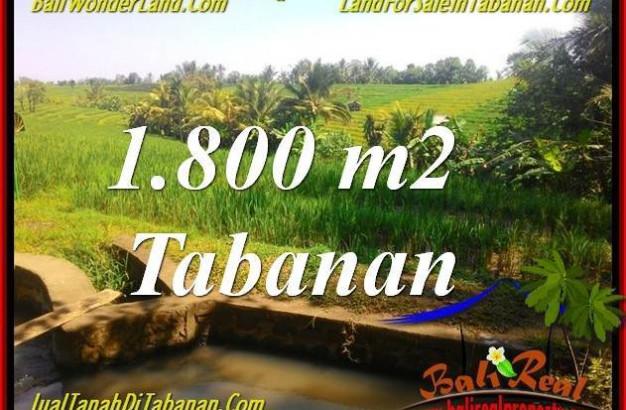 FOR SALE Beautiful PROPERTY 1,800 m2 LAND IN Tabanan Selemadeg TJTB338