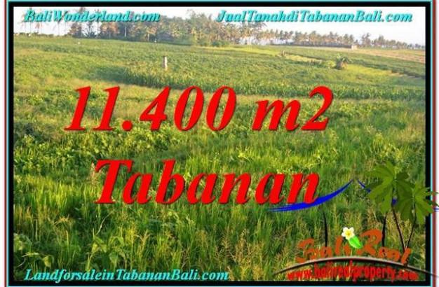 11,400 m2 LAND SALE IN Tabanan Selemadeg BALI TJTB339