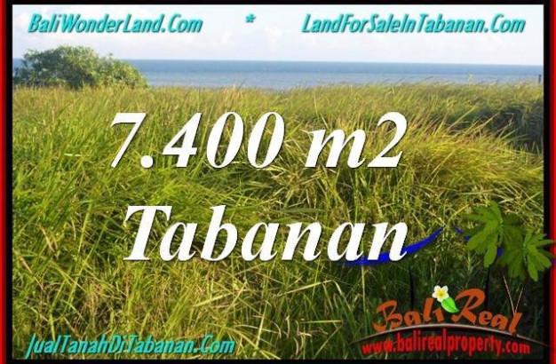 Magnificent TABANAN BALI 7,400 m2 LAND FOR SALE TJTB341
