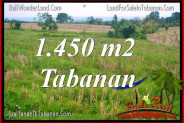 FOR SALE LAND IN Tabanan Selemadeg BALI TJTB343