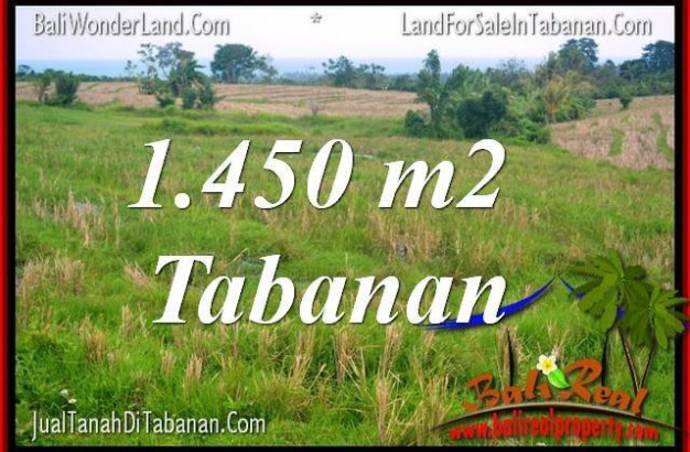 FOR SALE LAND IN Tabanan Selemadeg BALI TJTB343