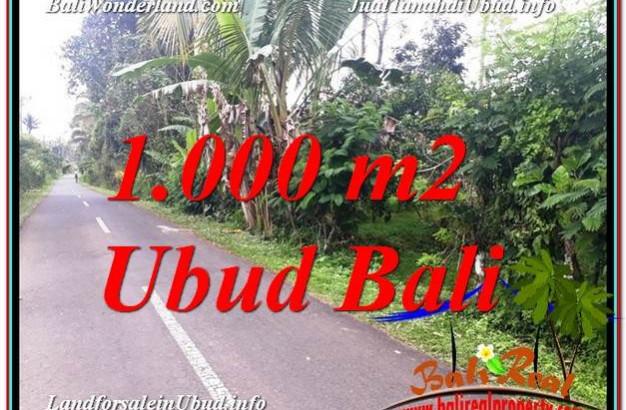 Affordable PROPERTY UBUD BALI 1,000 m2 LAND FOR SALE TJUB614