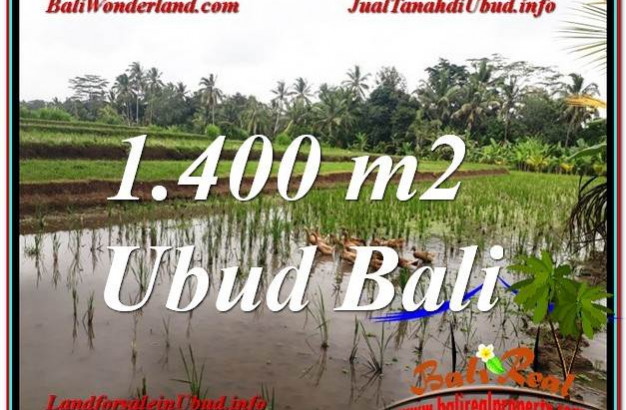 Affordable PROPERTY LAND IN UBUD FOR SALE TJUB615