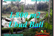 FOR SALE Affordable 1,800 m2 LAND IN UBUD TJUB616