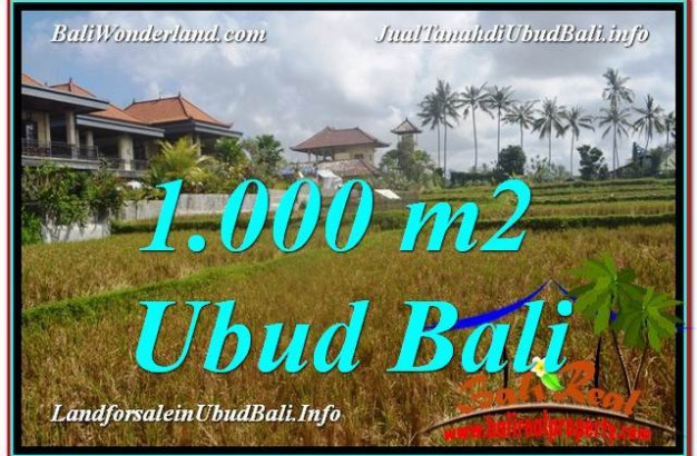 Affordable LAND IN Ubud Pejeng BALI FOR SALE TJUB618