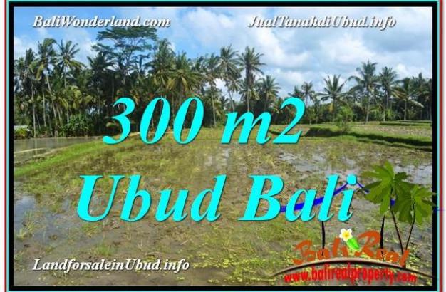 Magnificent PROPERTY LAND SALE IN UBUD TJUB619
