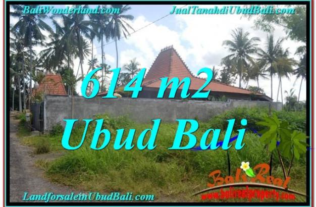 LAND FOR SALE IN Sentral Ubud BALI TJUB622