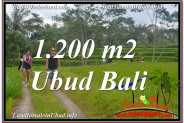 UBUD 1,200 m2 LAND FOR SALE TJUB624