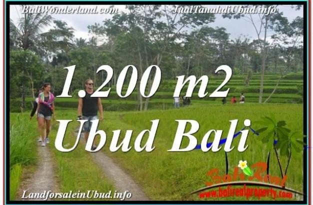 UBUD 1,200 m2 LAND FOR SALE TJUB624