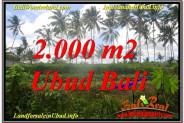 Affordable PROPERTY UBUD LAND FOR SALE TJUB625