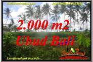 Affordable 2,000 m2 LAND IN UBUD BALI FOR SALE TJUB625