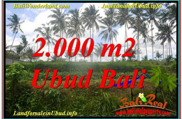 Affordable 2,000 m2 LAND IN UBUD BALI FOR SALE TJUB625