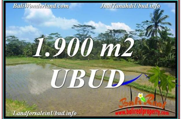 Magnificent 1,900 m2 LAND SALE IN UBUD BALI TJUB629
