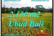 2,150 m2 LAND FOR SALE IN UBUD TJUB606