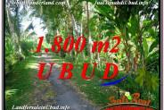 1,800 m2 LAND SALE IN UBUD BALI TJUB597